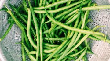 பீன்ஸ் (Beans)