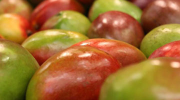 மாம்பழம் (Mango)