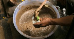 பஞ்சகவ்யா தயாரிக்கும் முறை